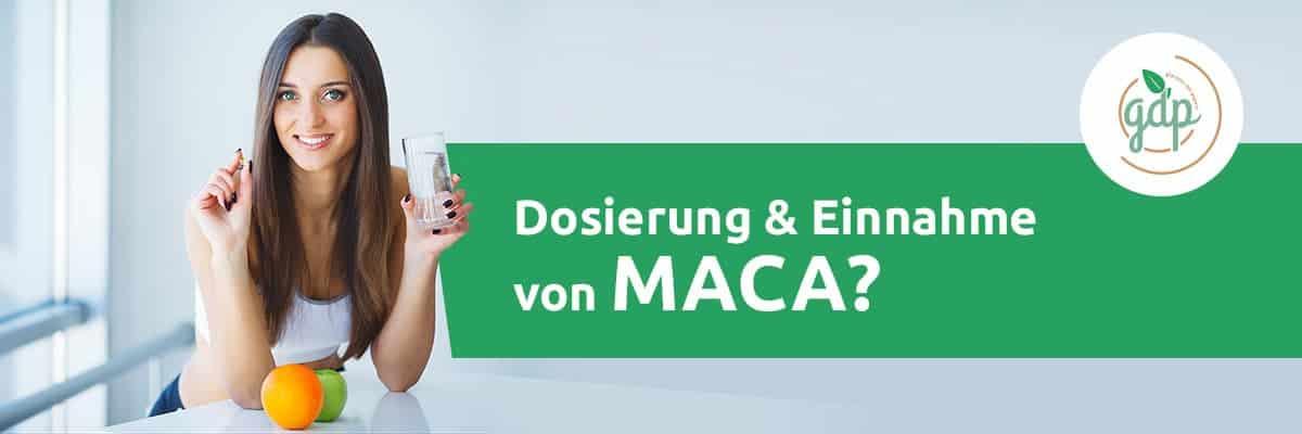 MACA 05 Einnahme