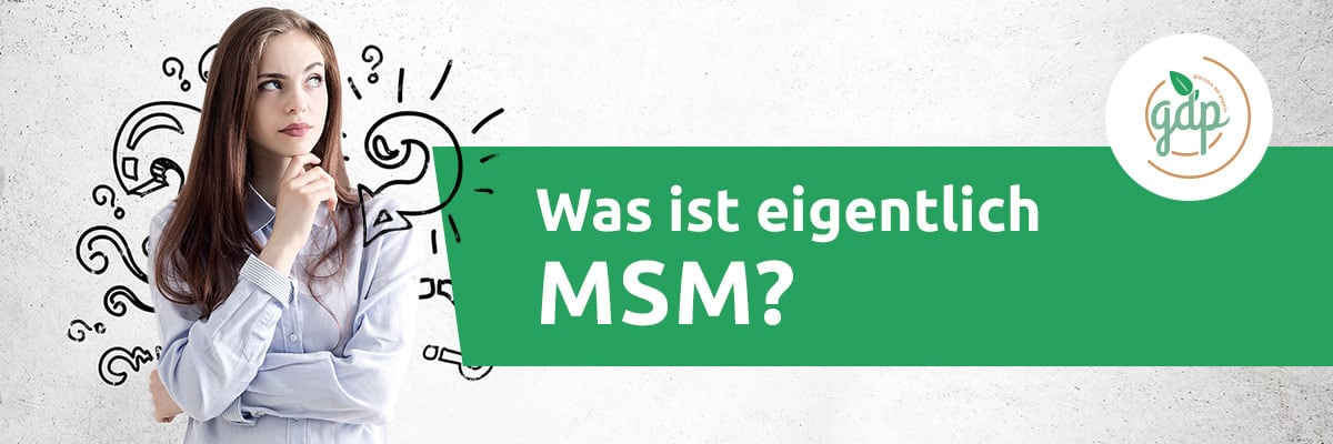 MSM 01 Was