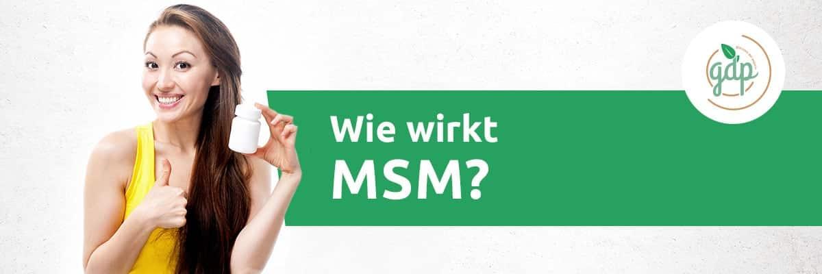 MSM 02 Wie