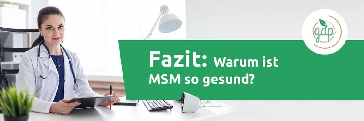 MSM 06 Fazit