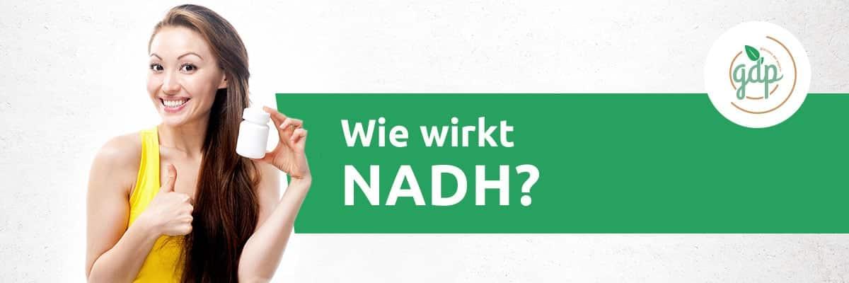 NADH 02 Wie