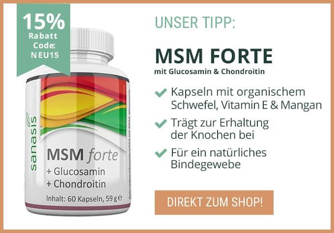 MSM kaufen