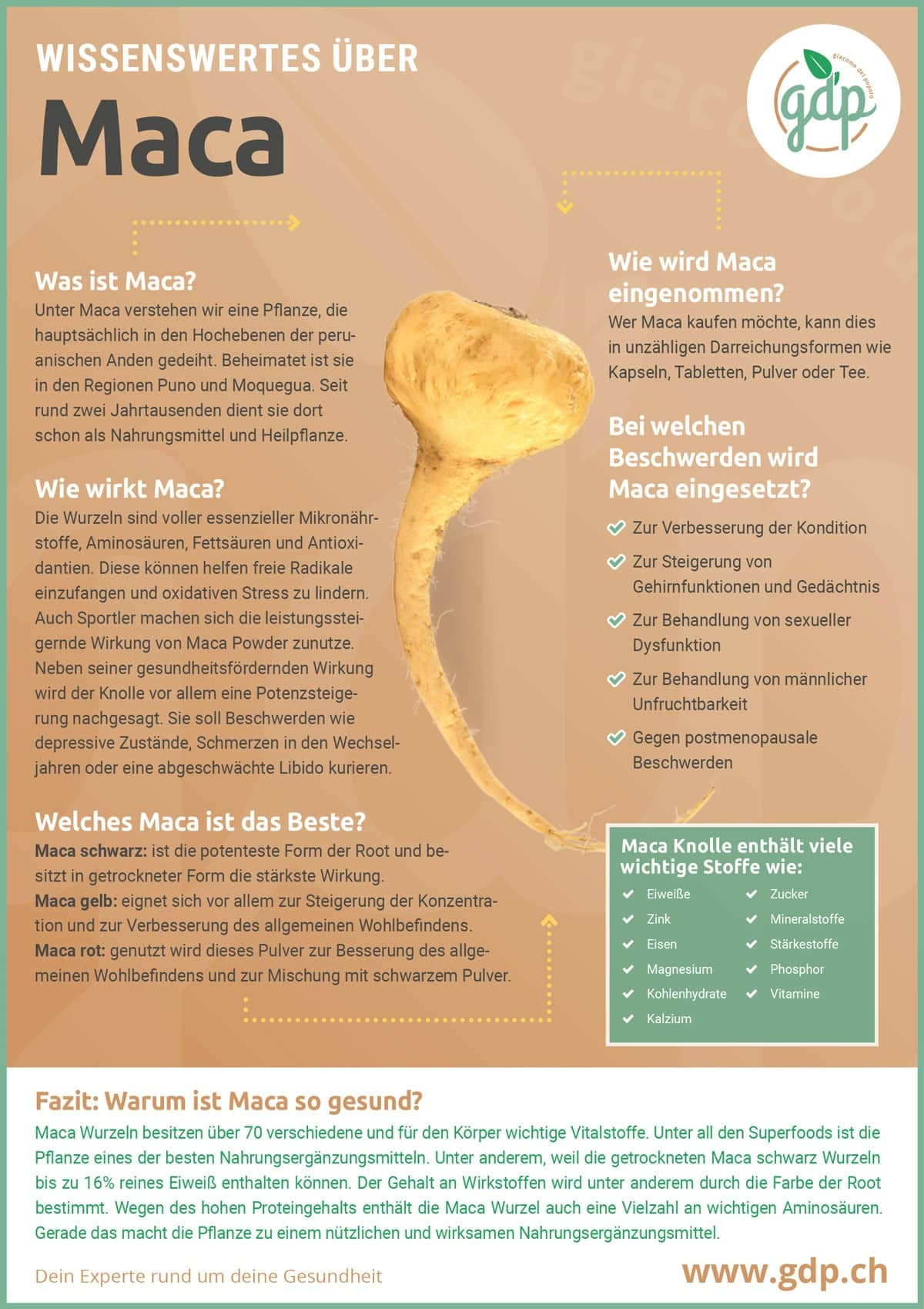 Maca Infografik