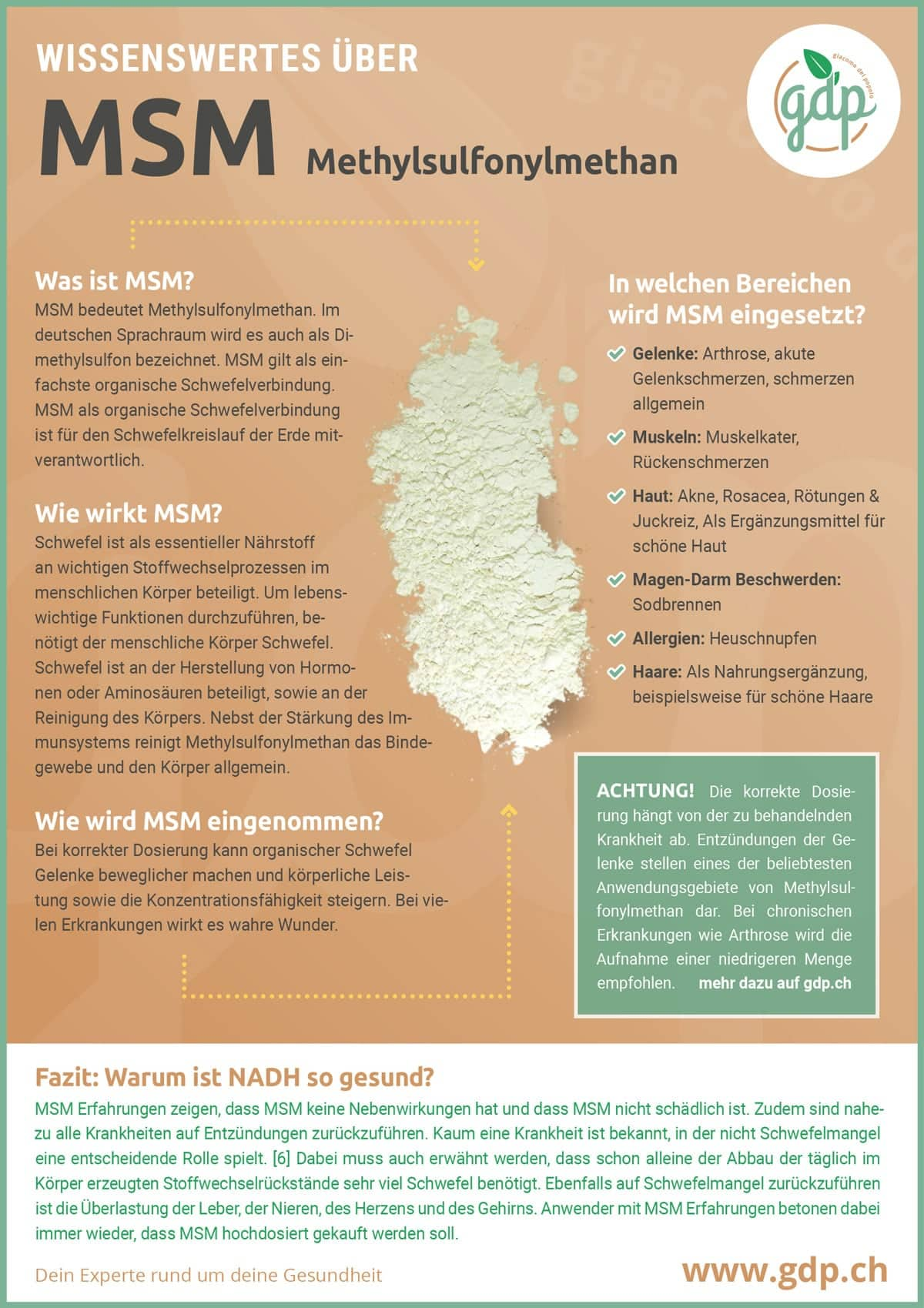 MSM Infografik