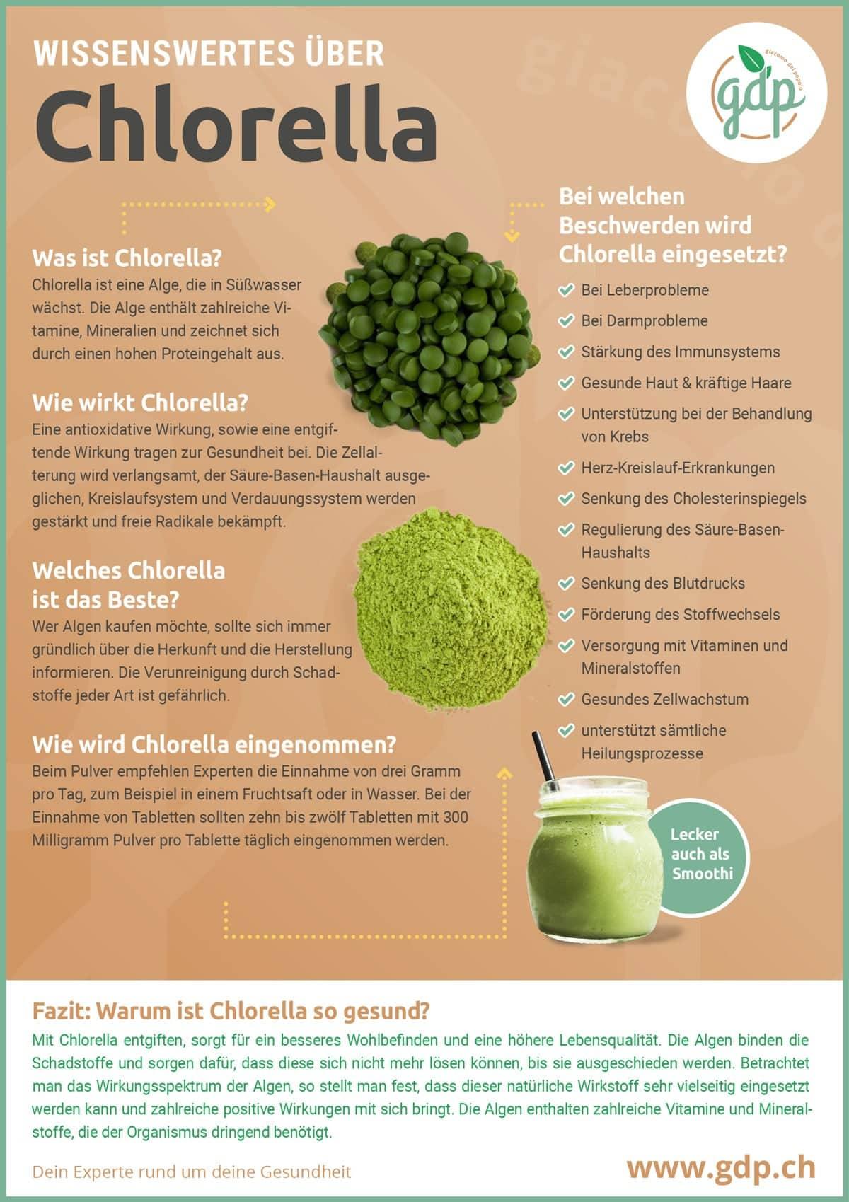 Chlorella Infografik