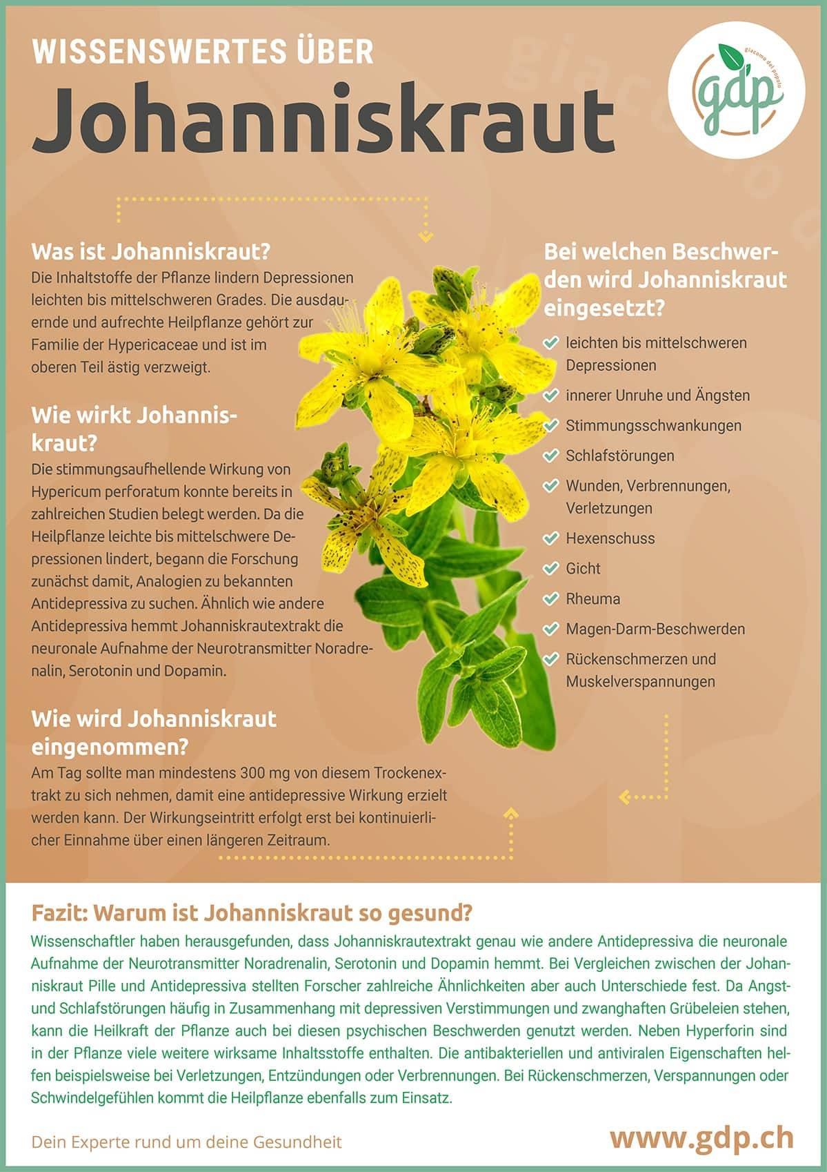 Johanniskraut gdp Infografik