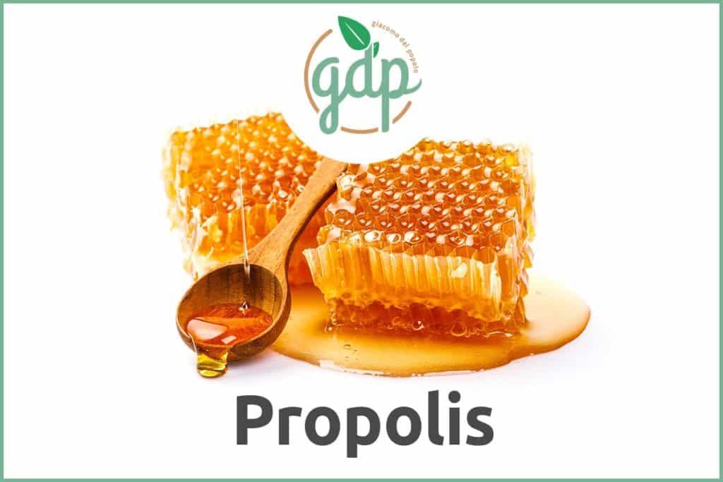 Guide du PIB de Propolis