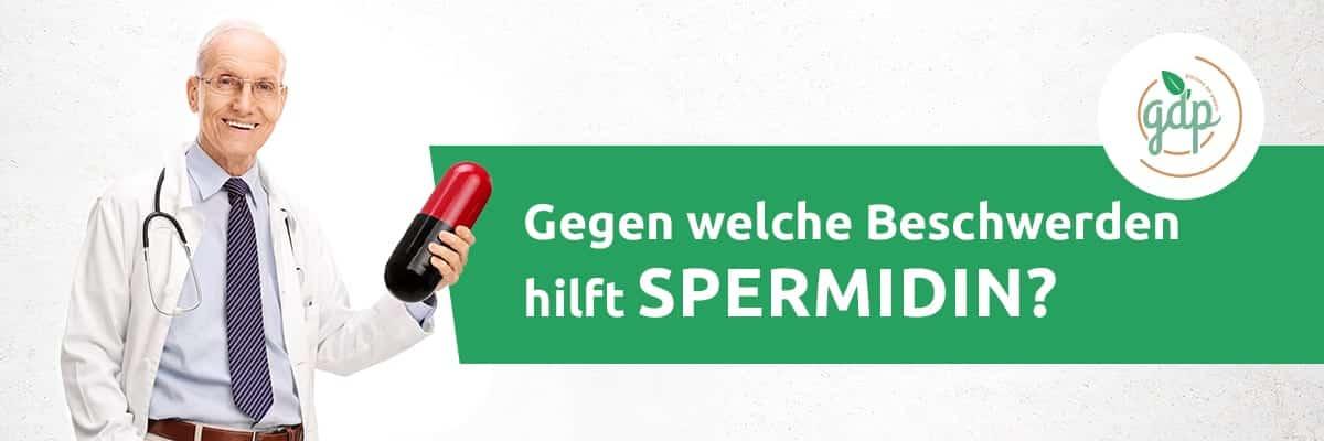 Helps Spermidine