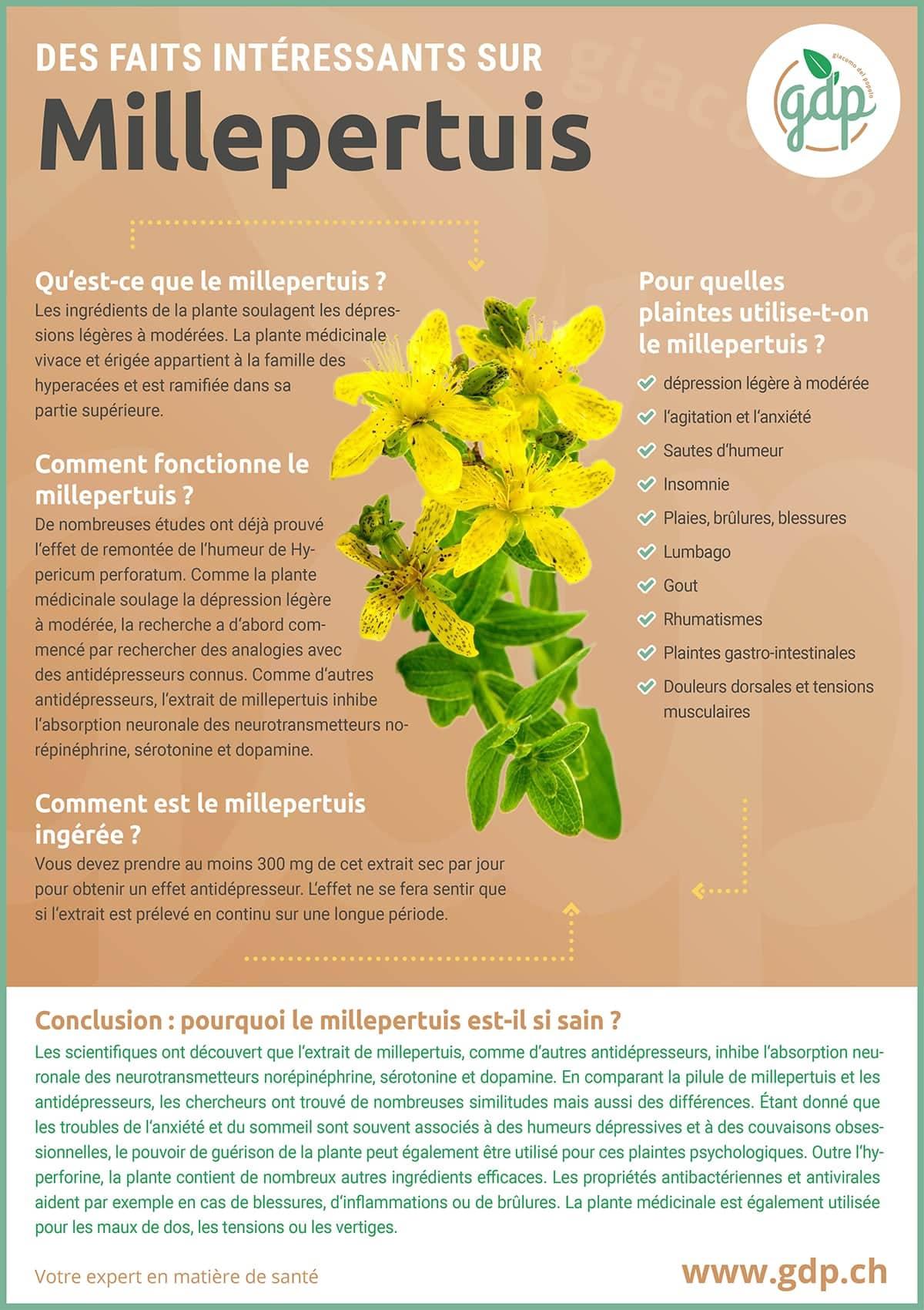 gdp Graphique d'information Millepertuis