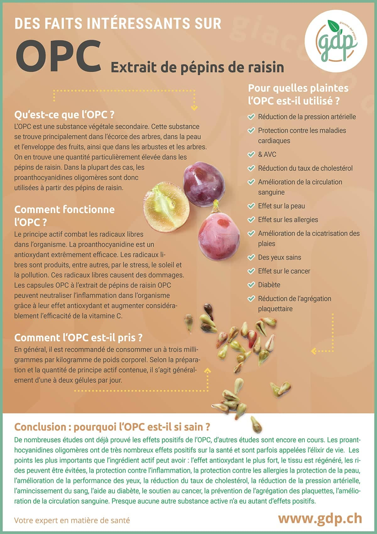 gdp Graphique d'information OPC