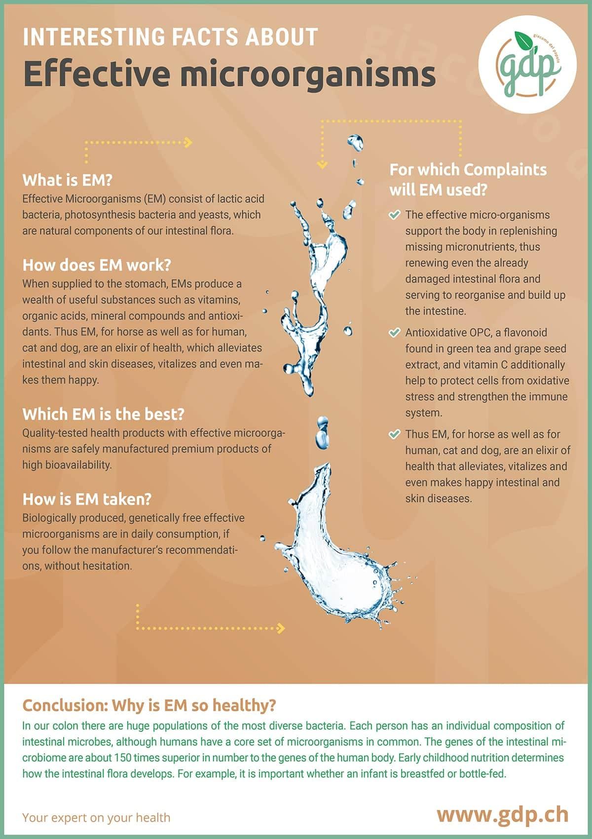 gdp infografic EM