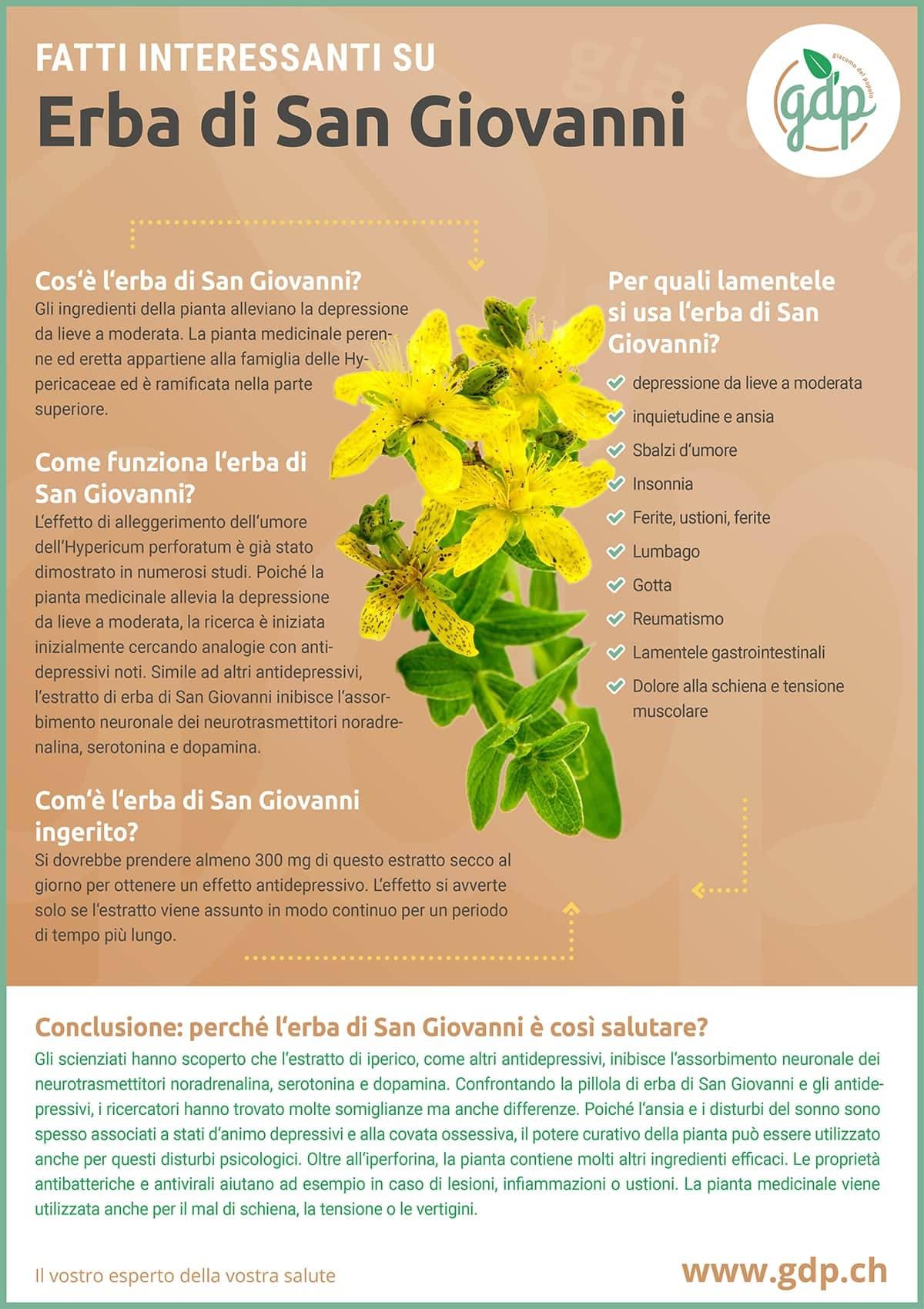 gdp infografica Erba di San Giovanni