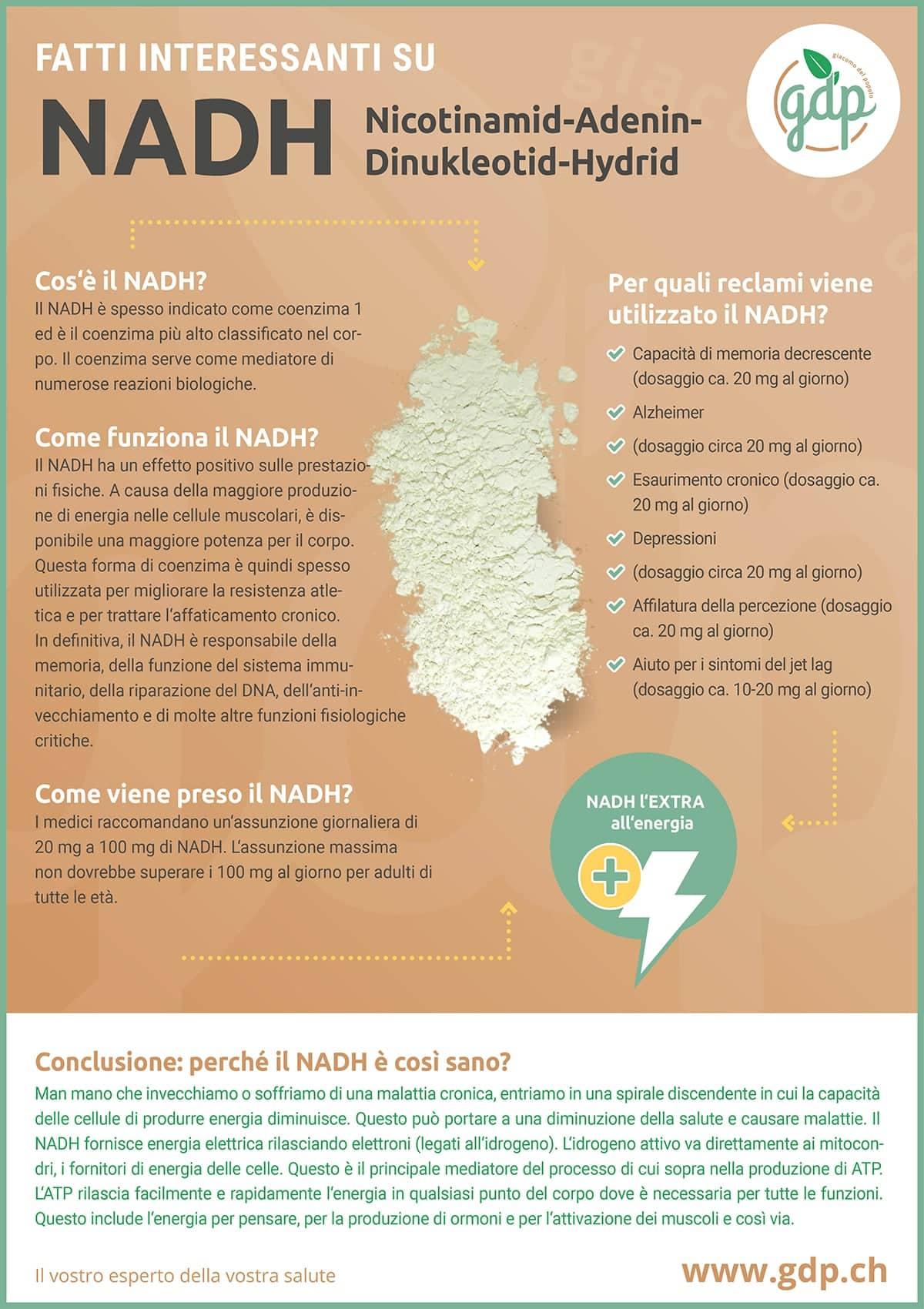 gdp infografica NADH
