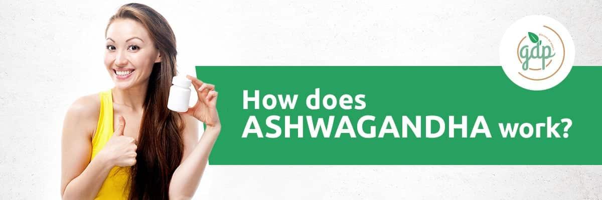 Ashwagandha gdp