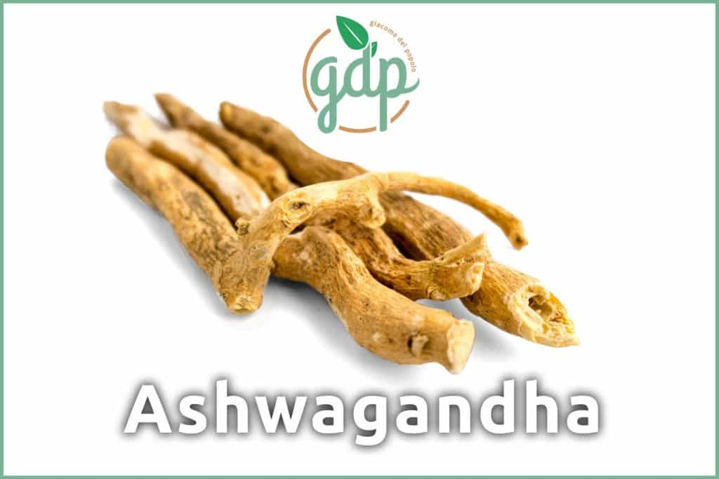 Ashwagandha gdp cover
