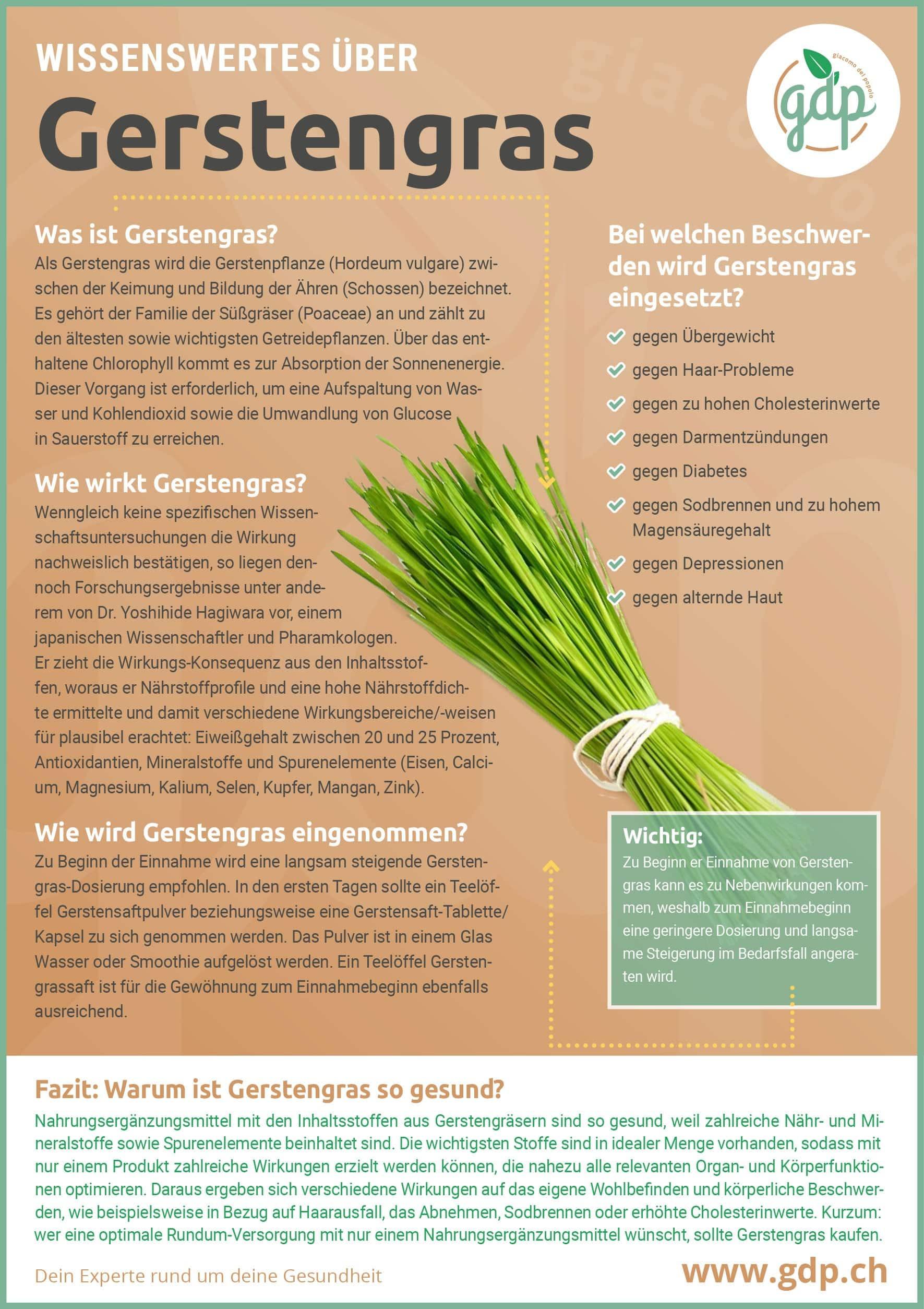 gerstengras gdp infografik