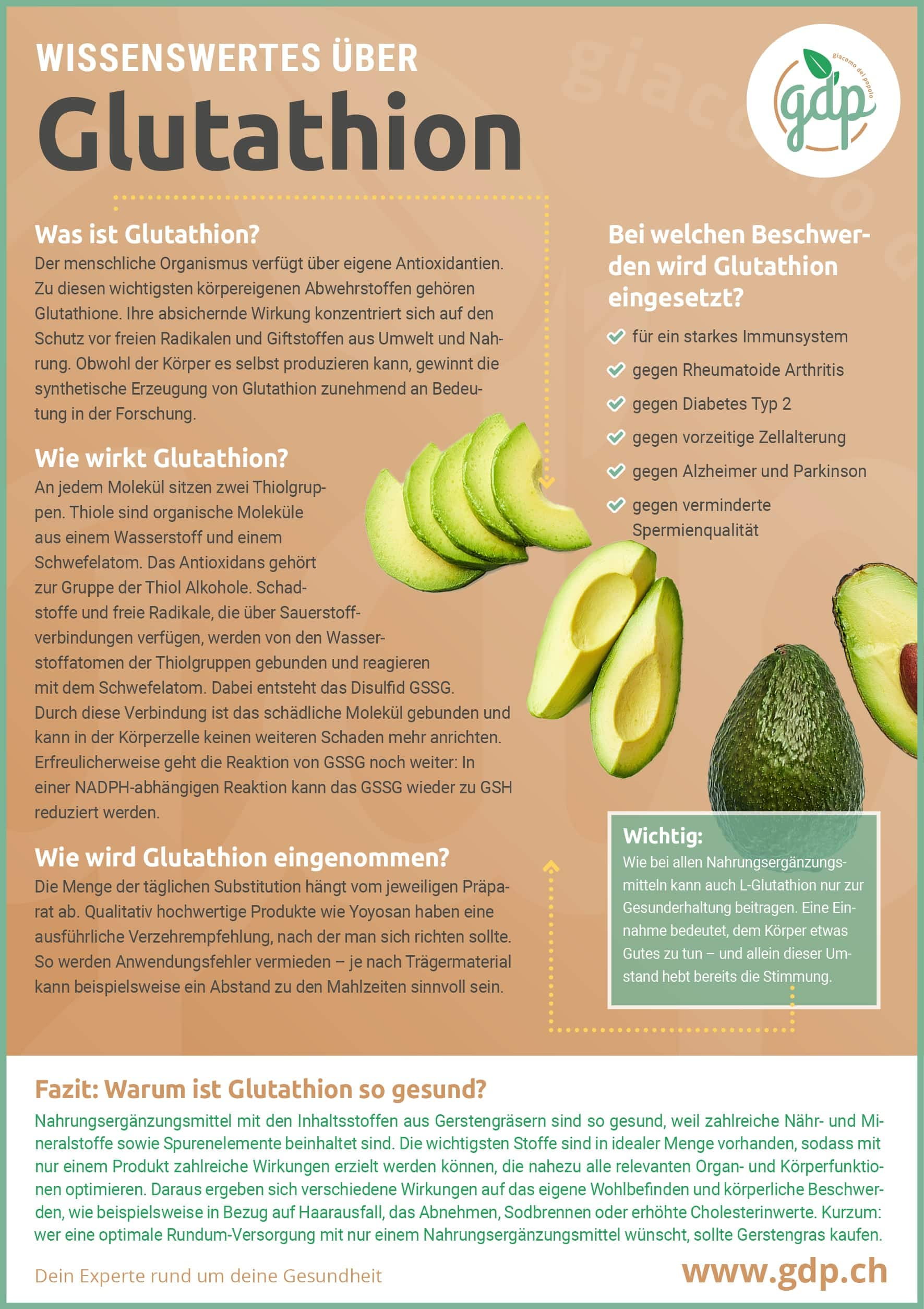 glutathion gdp infografik