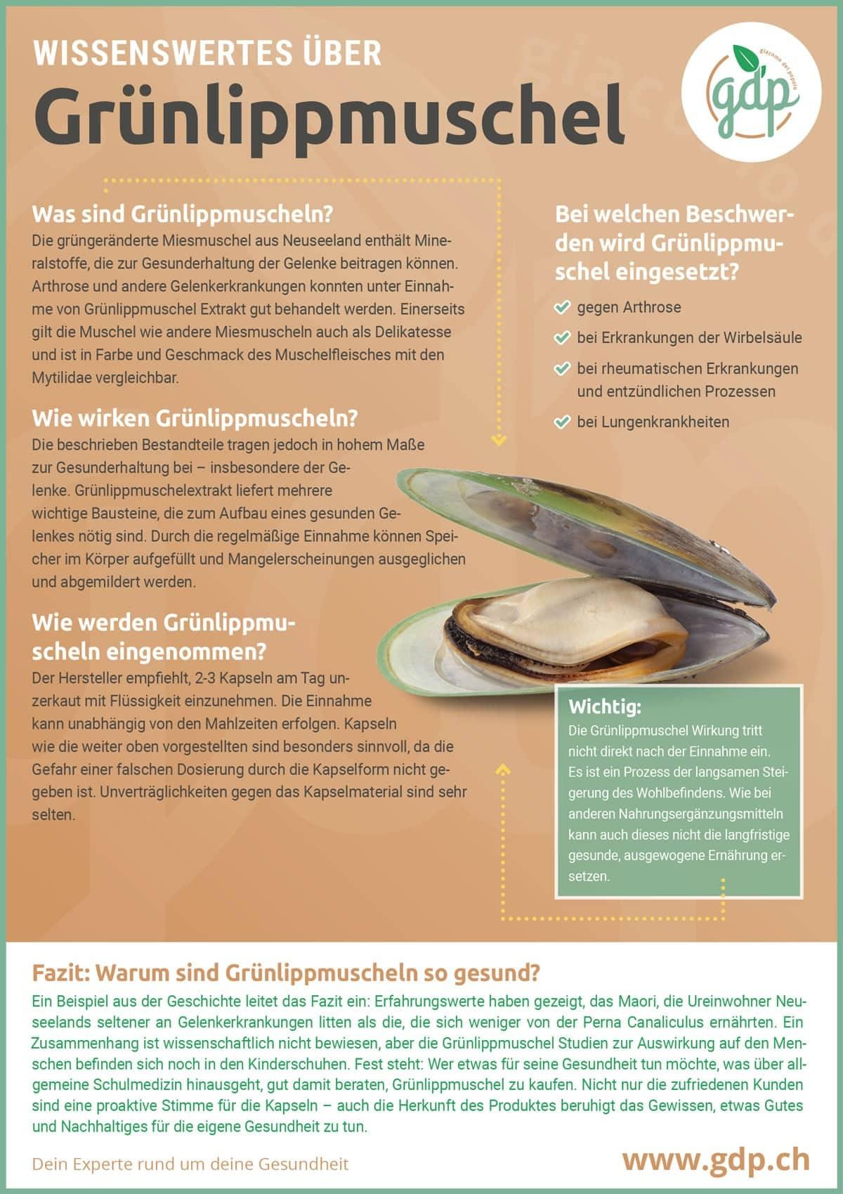 gruenlippmuschel gdp infografik