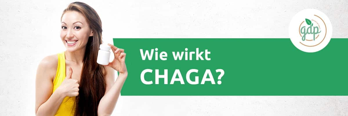 Wie wirkt Chaga
