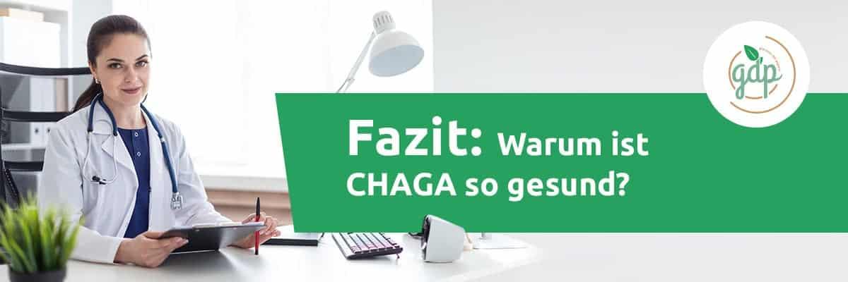 Fazit Chaga