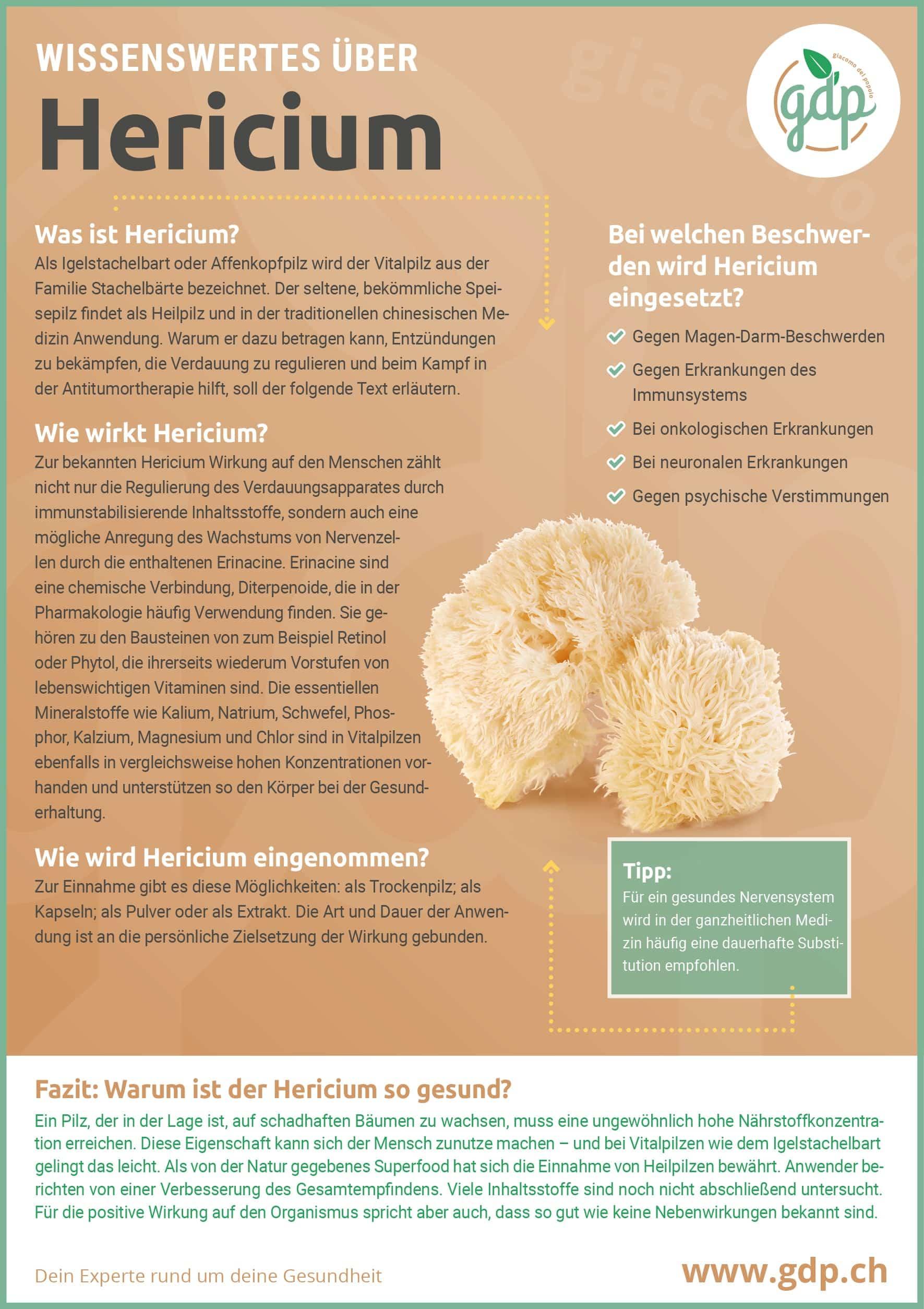 Hericium gdp Infografik