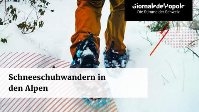 Schneeschuhwandern in den Alpen